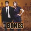 BONES(ボーンズ)オリジナル・TV・サウンドトラック