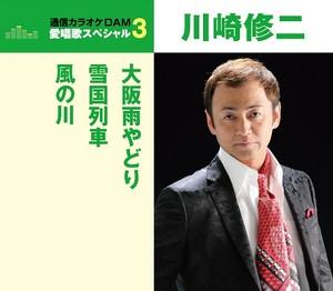愛唱歌スペシャル3 大阪雨宿り/雪国列車/風の川