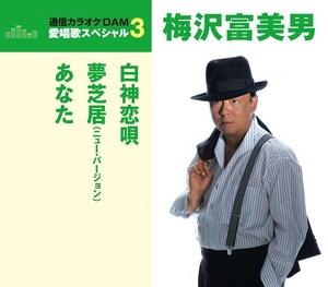 愛唱歌スペシャル3 白神恋歌/夢芝居(New Version)/あなた