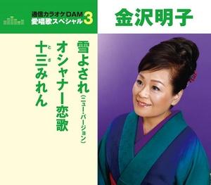 愛唱歌スペシャル3 雪よされ(ニューバージョン)/オシャナー恋歌/十三みれん