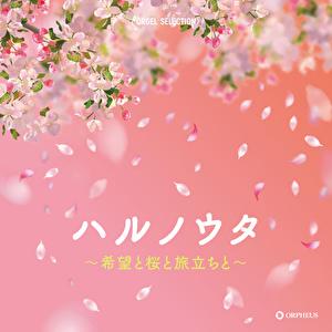 オルゴール・セレクション ハルノウタ~希望と桜と旅立ちと~