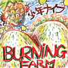 BURNING FARM (SHMCD)