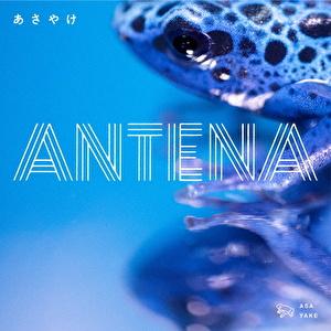 "3rd mini Album 「あさやけ」&DVD「ANTENAワンマンライブ ""Liten stad"" 渋谷WWW」"