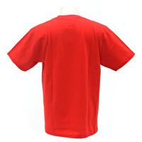 Tシャツ/ROMANTICISM LEMONed 2nd | 2